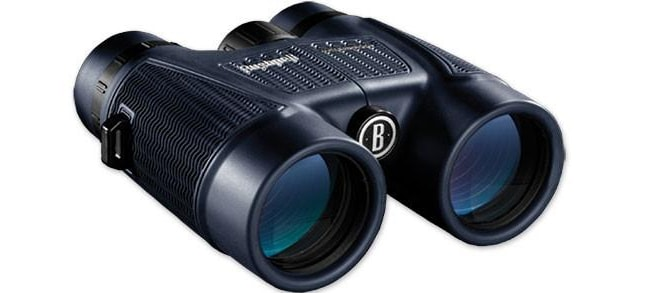Bushnell 8x42 Black Roof BAK-4, WP/FP, Twist Up Eyecups, Box 6 L