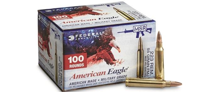 Federal American Eagle .223 55gr FMJ 100rd