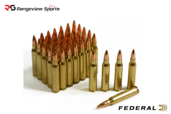 Federal American Eagle 223 Rem Rifle Ammo, 55Gr FMJBT 3240FPS – 10Rds Loose Pack Rangeviewsports Canada